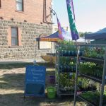Allendale Nursery and Clunes Farmers' Market